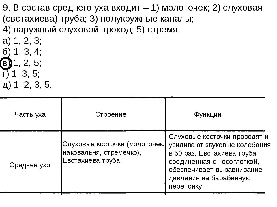 9. В состав среднего уха входит – 1) молоточек; 2) слуховая (евстахиева) труб...