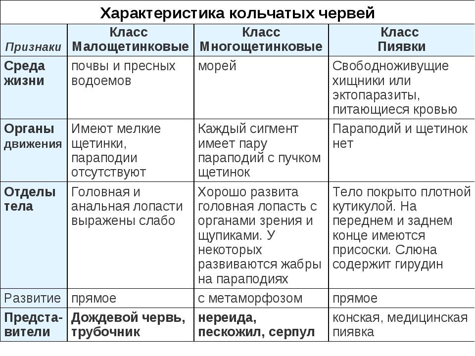 Характеристика кольчатых червей ПризнакиКласс МалощетинковыеКласс Многощети...