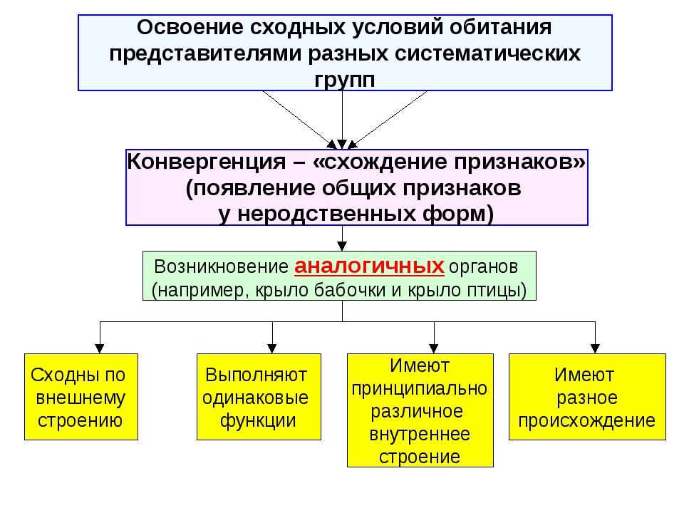 Освоение сходных условий обитания представителями разных систематических груп...