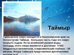 Таймыр Таймырское озеро находится в Красноярском крае на полуострове Таймыр