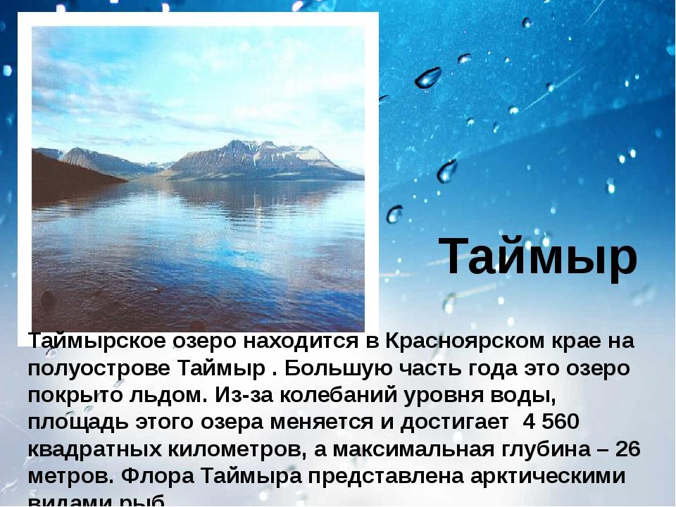 Таймыр Таймырское озеро находится в Красноярском крае на полуострове Таймыр...