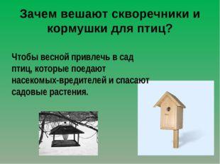 Зачем вешают скворечники и кормушки для птиц? Чтобы весной привлечь в сад пти
