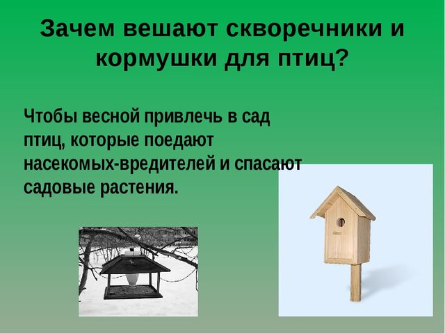 Зачем вешают скворечники и кормушки для птиц? Чтобы весной привлечь в сад пти...