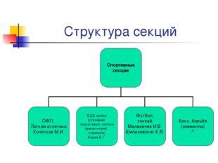 Структура секций