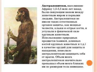 Древнейших людей сменили древние люди –неандертальцы(по месту их первой нах