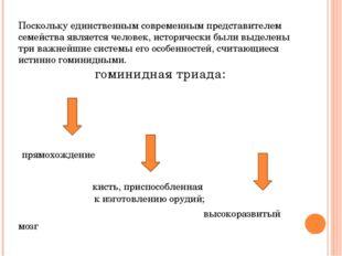 В настоящее время выделяют следующие основные этапы эволюции человека: дриопи