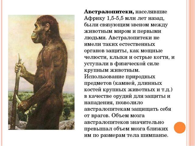Древнейших людей сменили древние люди –неандертальцы(по месту их первой нах...
