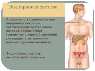 Эндокринная система Совокупность основных желез внутренней секреции, согласов