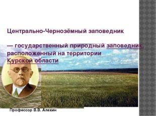 Профессор В.В. Алехин Центрально-Чернозёмный заповедник — государственный пр