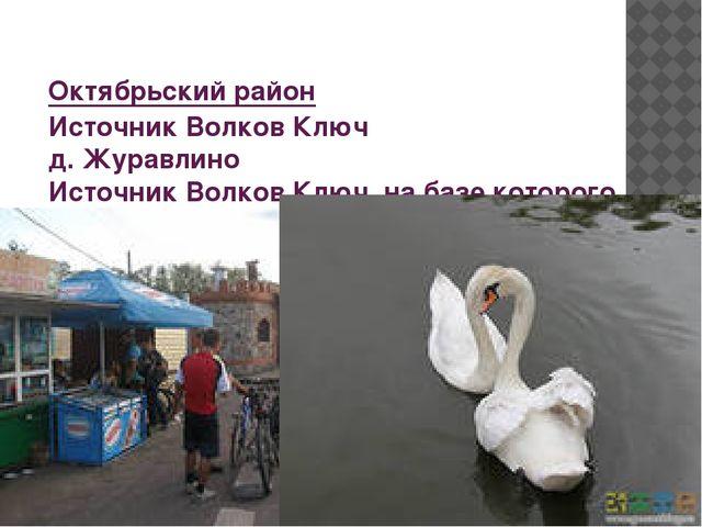Октябрьский район Источник Волков Ключ д. Журавлино Источник Волков Ключ, на...