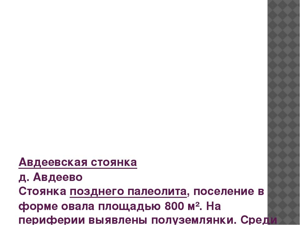 Авдеевская стоянка д. Авдеево Стоянка позднего палеолита, поселение в форме о...