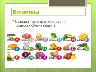 Защищают организм, участвуют в процессах обмена веществ Витамины