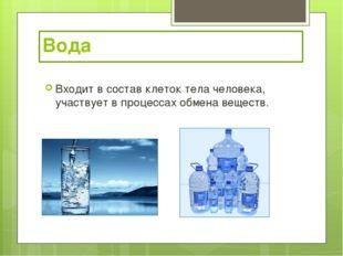 Вода Входит в состав клеток тела человека, участвует в процессах обмена веще