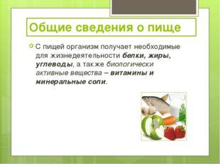 Общие сведения о пище С пищей организм получает необходимые для жизнедеятельн