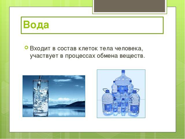 Вода Входит в состав клеток тела человека, участвует в процессах обмена веще...