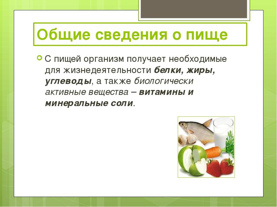 Общие сведения о пище С пищей организм получает необходимые для жизнедеятельн...