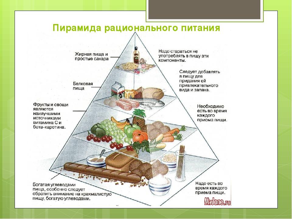 ПИЩЕВАРИТЕЛЬНАЯ СИСТЕМА ЧЕЛОВЕКА  Золотые правила питания