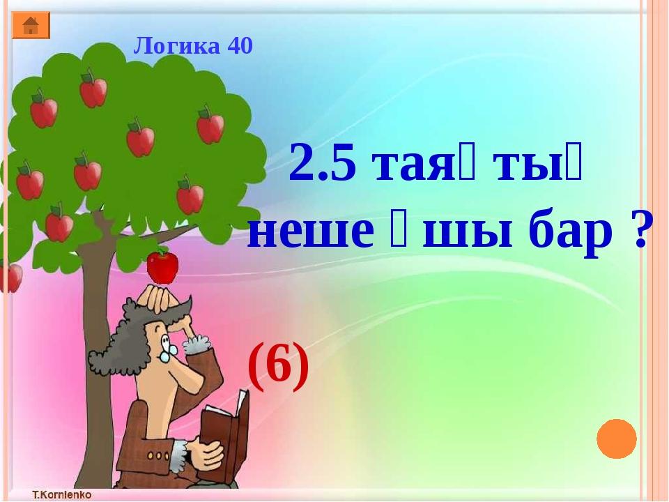 Логика 40 2.5 таяқтың неше ұшы бар ? (6)