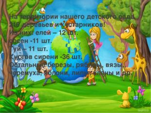 На территории нашего детского сада 216 деревьев и кустарников! Из них: елей –