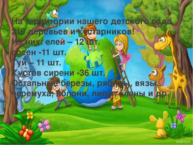 На территории нашего детского сада 216 деревьев и кустарников! Из них: елей –...