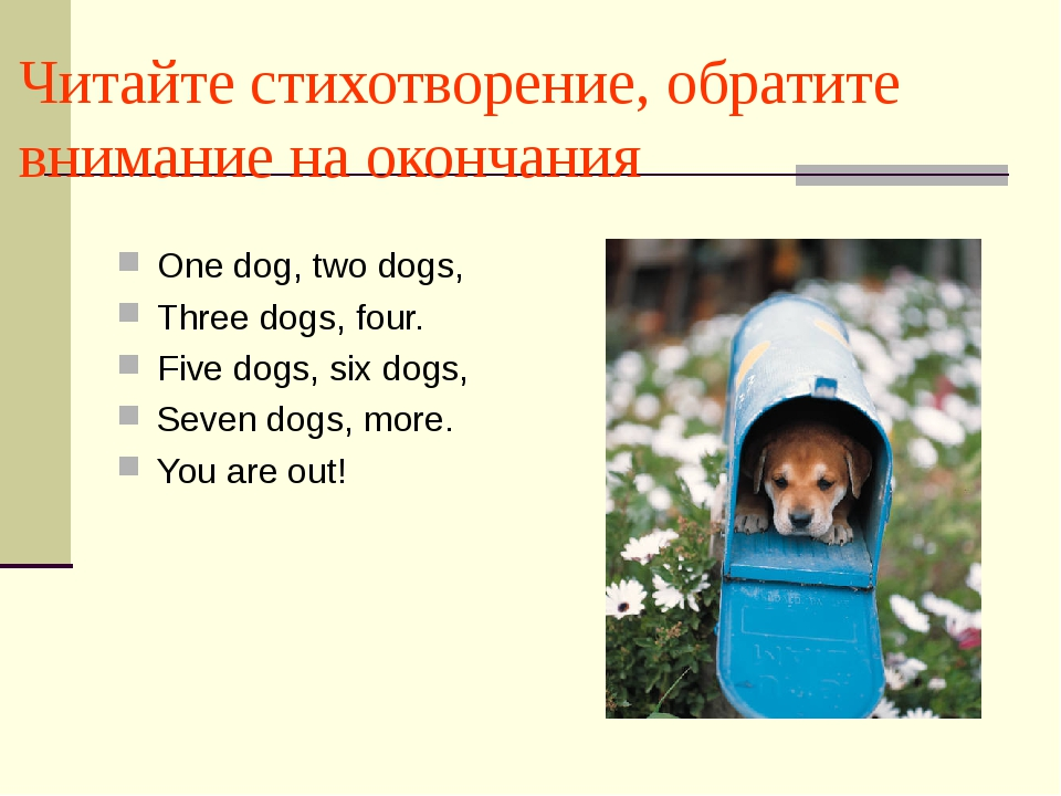 Читайте стихотворение, обратите внимание на окончания One dog, two dogs, Thre...