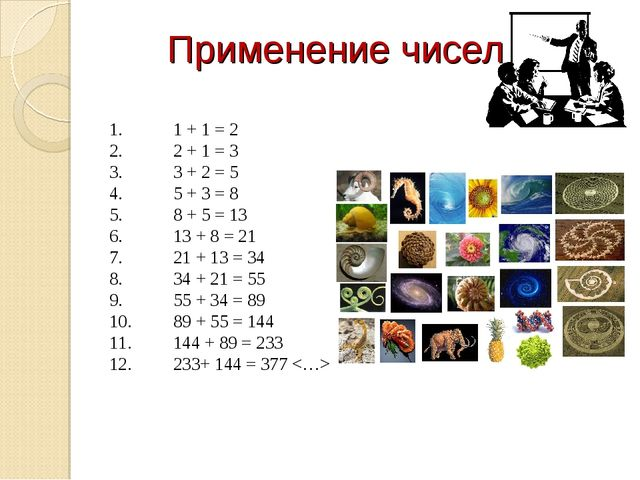 Применение чисел 1.1 + 1 = 2 2.2 + 1 = 3 3.3 + 2 = 5 4.5 + 3 = 8 5.8 +...