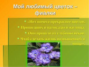 * Мой любимый цветок – фиалки «Нет ничего прекраснее цветов, Пришедших в пали