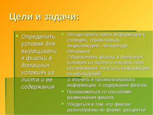 Цели и задачи: Определить условия для выращивания фиалки в домашних условиях