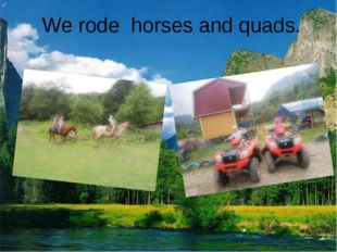 We rode horses and quads.