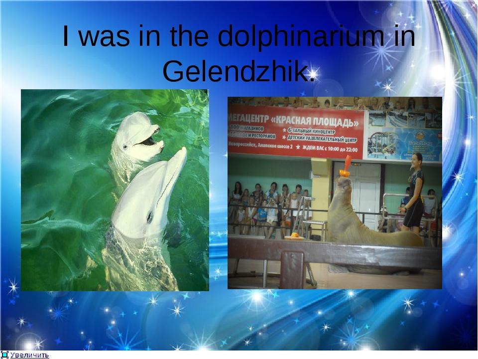 I was in the dolphinarium in Gelendzhik.