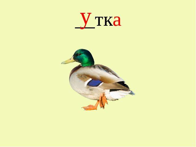 __тка у