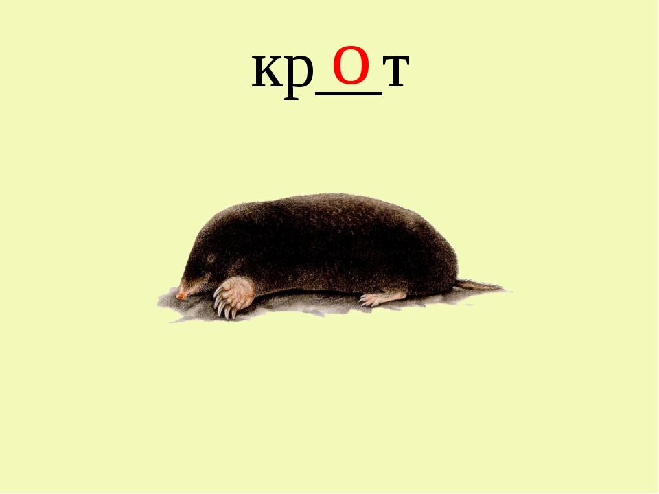 кр__т о