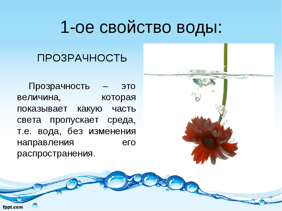 1-ое свойство воды: ПРОЗРАЧНОСТЬ Прозрачность – это величина, которая показыв...