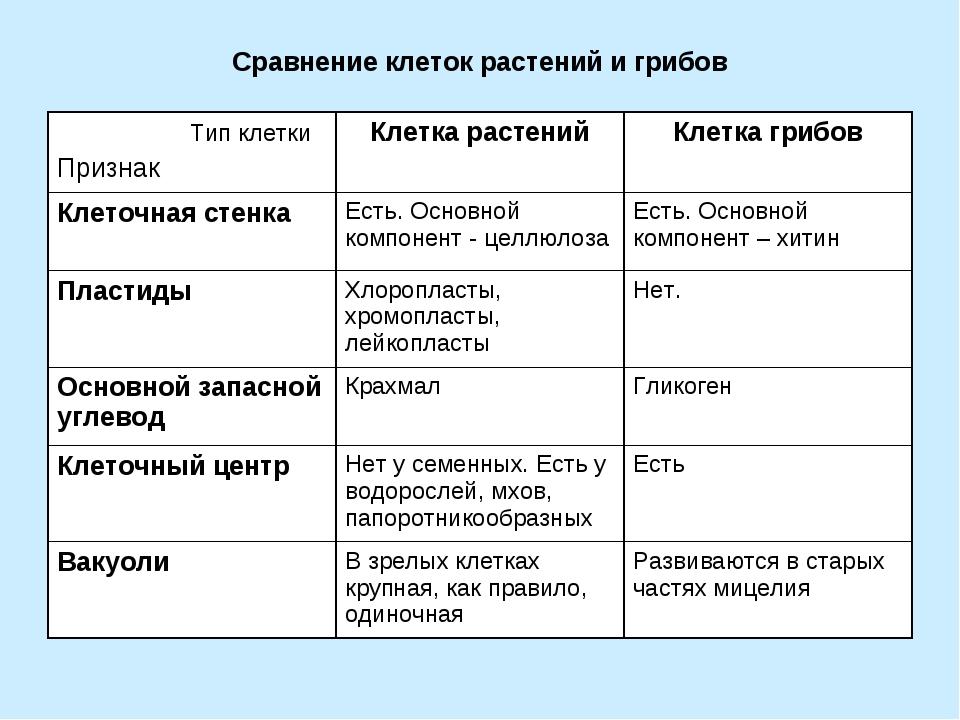 Сравнение клеток растений и грибов Тип клетки ПризнакКлетка растенийКлетка...