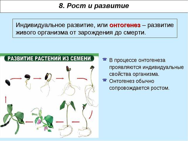 Индивидуальное развитие, или онтогенез – развитие живого организма от зарожде...
