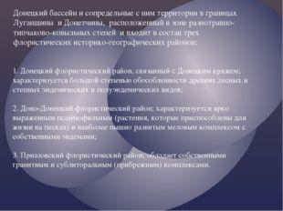 Донецкий бассейн и сопредельные с ним территории в границах Луганщины и Донет