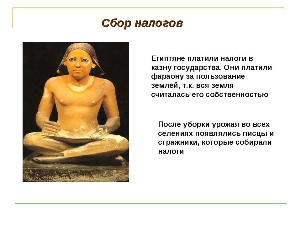 Сбор налогов Египтяне платили налоги в казну государства. Они платили фараону...