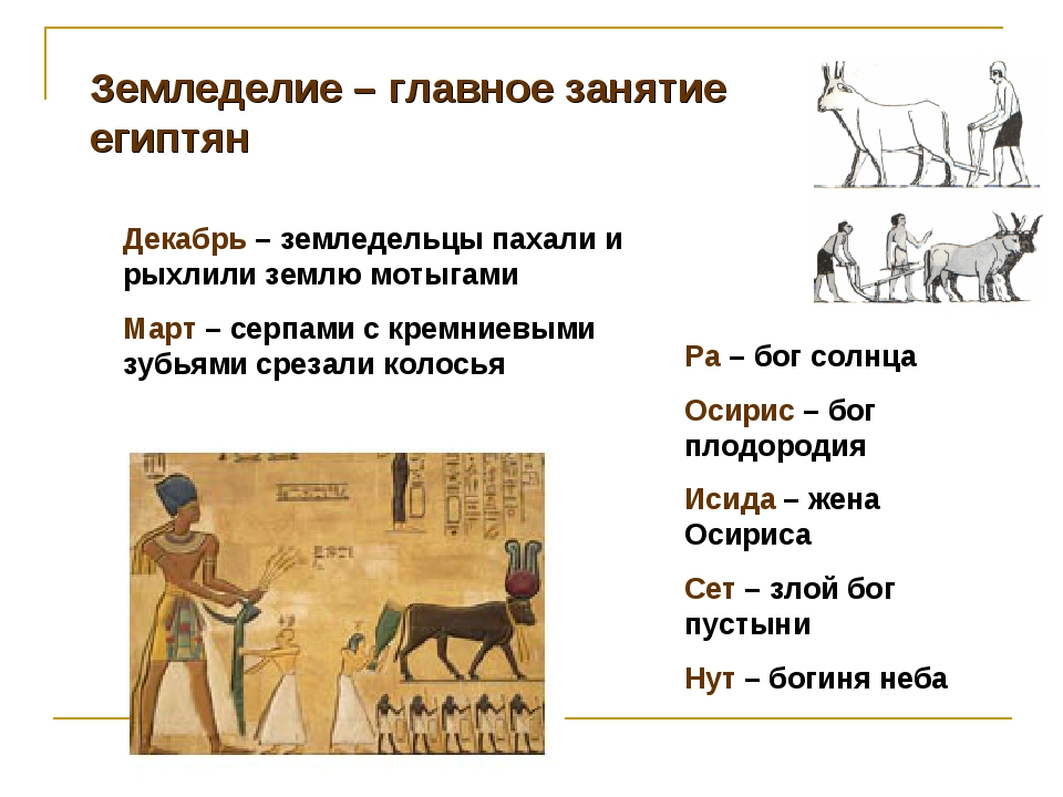 Земледелие – главное занятие египтян Декабрь – земледельцы пахали и рыхлили з...
