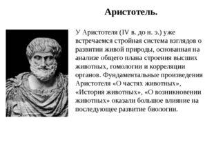 Аристотель. У Аристотеля (IV в. до н. э.) уже встречаемся стройная система вз