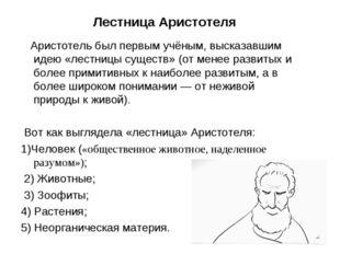 Лестница Аристотеля Аристотель был первым учёным, высказавшим идею «лестницы