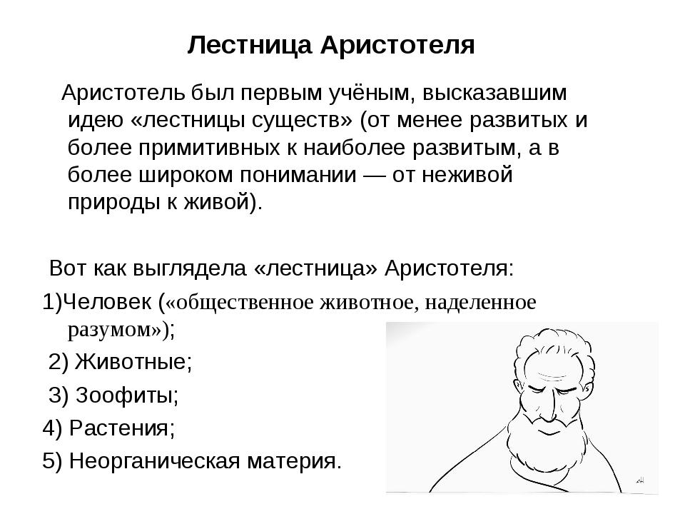 Лестница Аристотеля Аристотель был первым учёным, высказавшим идею «лестницы...
