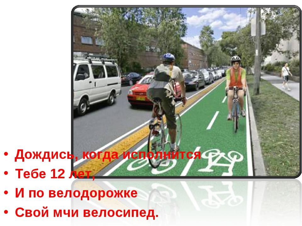 Дождись, когда исполнится Тебе 12 лет, И по велодорожке Свой мчи велосипед.