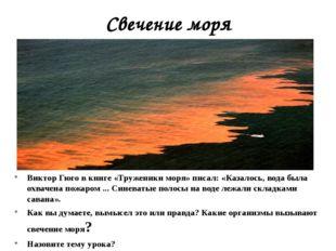 Свечение моря Виктор Гюго в книге «Труженики моря» писал: «Казалось, вода был