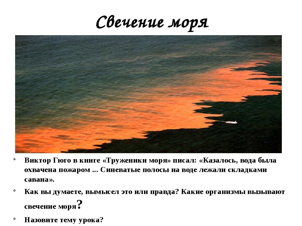 Свечение моря Виктор Гюго в книге «Труженики моря» писал: «Казалось, вода был...
