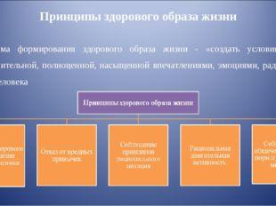 Принципы здорового образа жизни Программа формирования здорового образа жизни