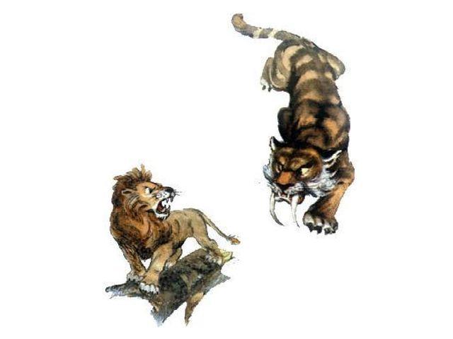 Битва с саблезубыми тиграми