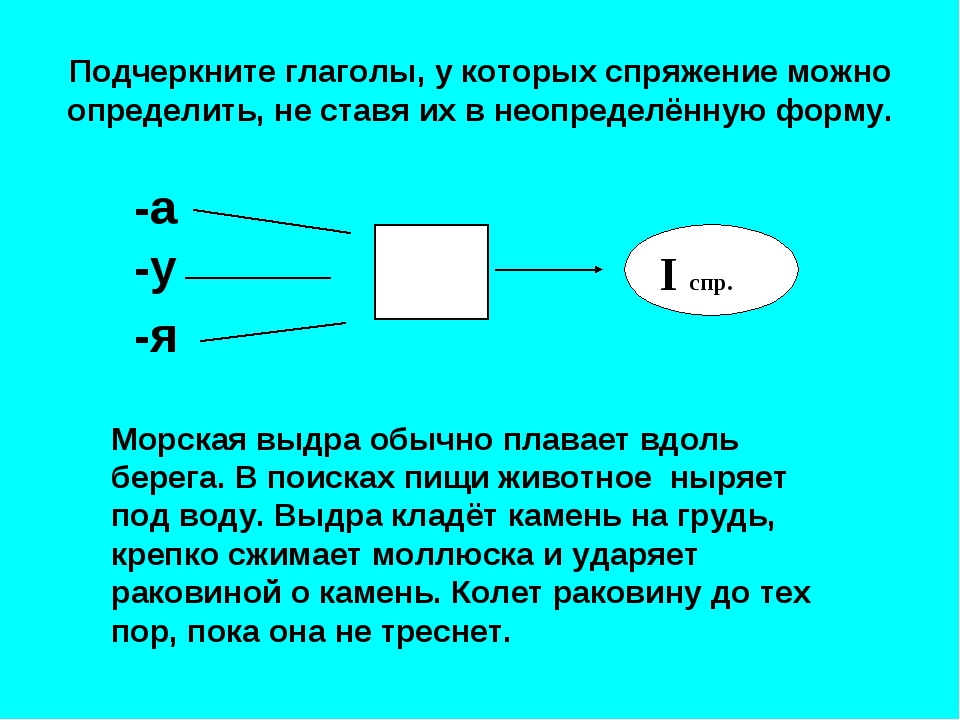 Подчеркните глаголы, у которых спряжение можно определить, не ставя их в неоп...