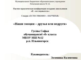 Муниципальное бюджетное образовательное учреждение Начальная школа № 12. Науч