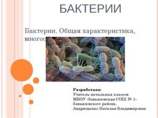 БАКТЕРИИ Бактерии. Общая характеристика, многообразие и значение Разработала: