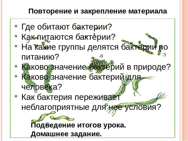 Повторение и закрепление материала Где обитают бактерии? Как питаются бактери...